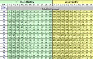 Bench Press Percentage Chart Welladvantage Employees Welladvantage