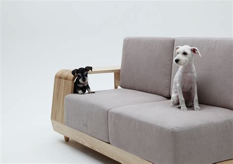 best sofa material for dogs the dog house sofa by seungji mun
