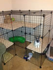 Cages For Rabbits 17 Best Ideas About Rabbit Cages On Pinterest Bunny