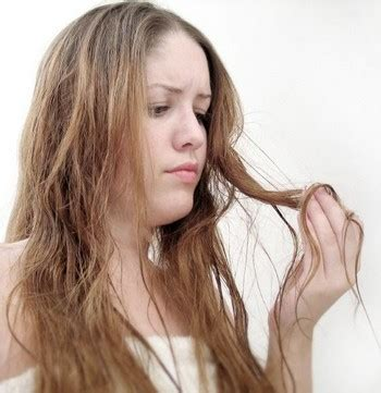Remedy For Dull Limp Hair by How To Nourish Hair At Home Speedy Remedies