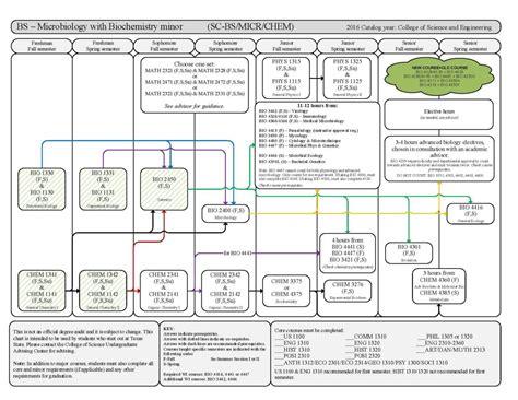 microbiology flowchart b s microbiology flowchart department of biology