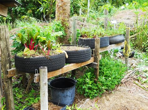 Tire Garden by Raised Bed Tire Garden Raising Tires Up On Rails Helps