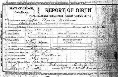 Chicago Illinois Birth Records Pergler Family History Anezka Anazka Agnes Pergler Materna 1878 1944