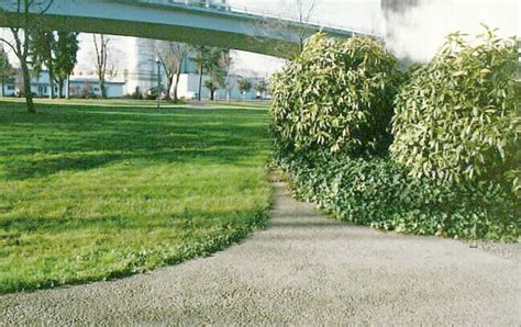 Landscape Underlayment Ipm Based Landscape Design Mowing Strips Underlayment