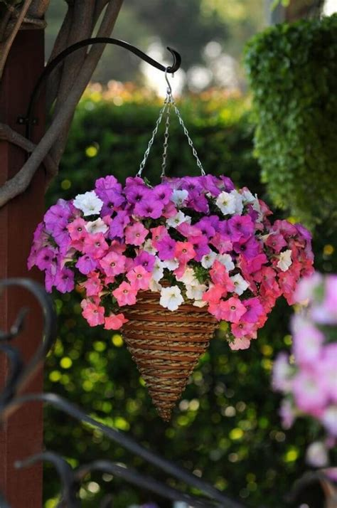 absolutely stunning outdoor hanging planter ideas