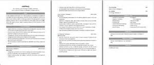 Sales Auditor Sle Resume by Auditor Resume Sales Auditor Lewesmr