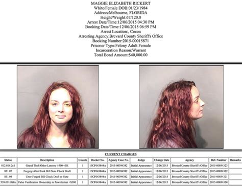 haley bennett dds arrests in brevard county december 7 2015