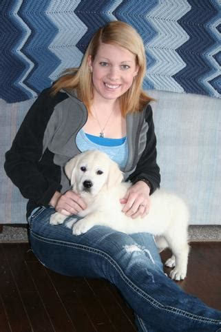 louboutin golden retriever golden retriever puppies in wisconsin