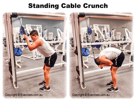standing cable crunch exercisescomau