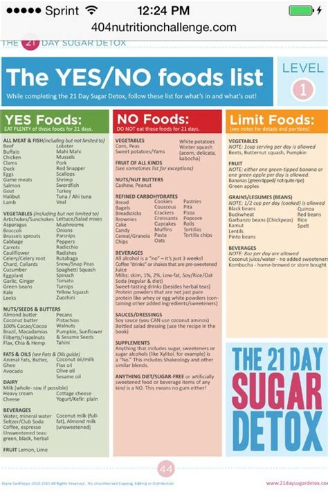 21 Day Sugar Detox by 21 Day Sugar Detox Level 1 Yes No Foods Fitness