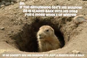 Groundhog Meme - groundhog day memes 2