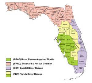 northern florida map contact us boxer rescue of florida