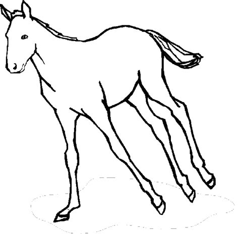 coloring page galloping horse wildlife animals quotes like success