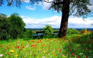 spring wallpapers hd hd wallpapers blog