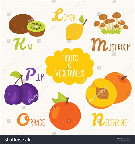 vegetables n fruits alphabet fruits vegetables letters k stock vector