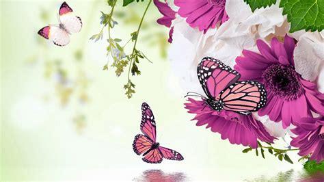 imagenes para fondos de pantalla flores maravillosos fondos de pantalla con flores imagenes de