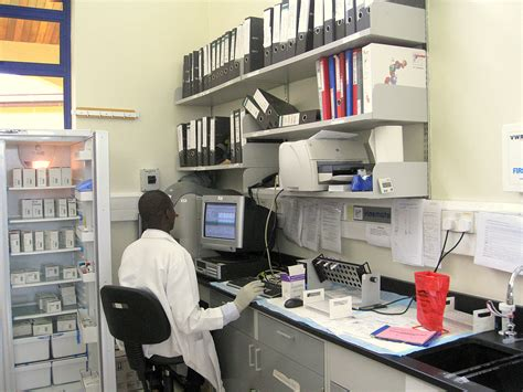lab bench main lab bench main building histology capacity for research in