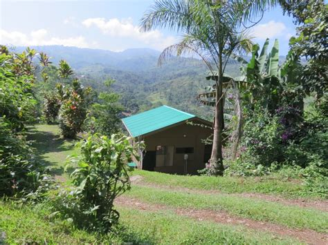 costa rica cottages cozy cottage with view in tranquil mountains of la suiza turrialba costa rica turrialba