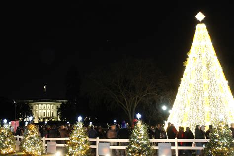 top 28 christmas tree lighting lottery awesome picture