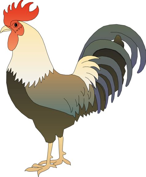 can stock photo clipart chicken rooster can stock photo drawing free