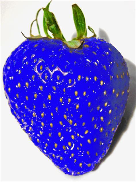 Strawberry Blue blue strawberry it s an sensation geekplanet