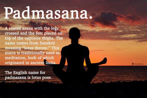 padmasana definition  yogapedia