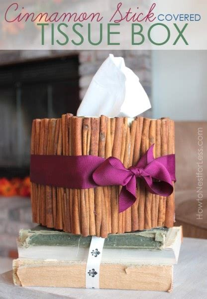 cinnamon stick tissue box   nest