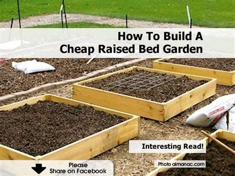 How To Build A Raised Bed Garden Frame How To Build A Cheap Raised Bed Garden
