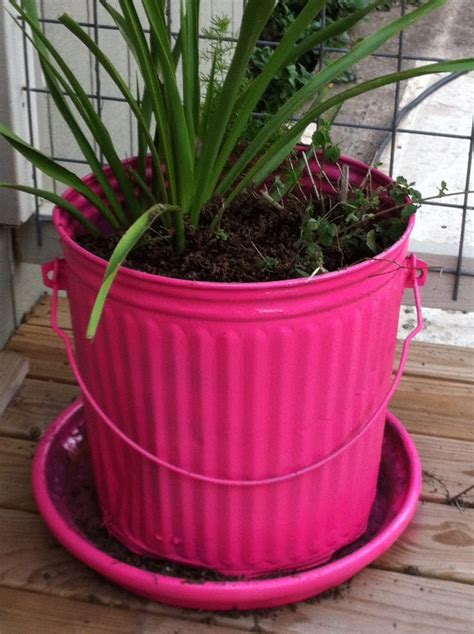 Trash Can Planter by 17 Best Images About Rocker San Antonio Tx On