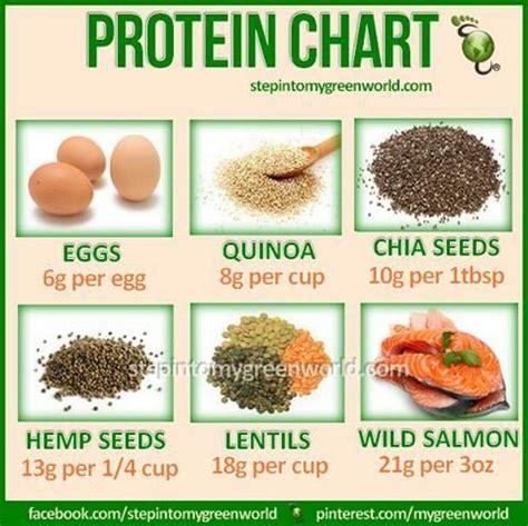 protein alternatives alternative protein sources fitness