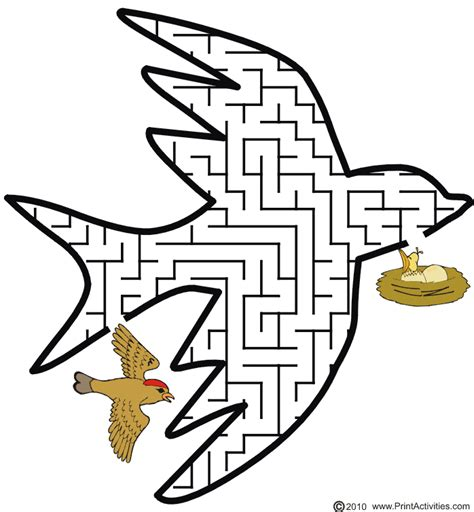 printable cheetah maze bird maze show the bird the way to it s nest puzzles