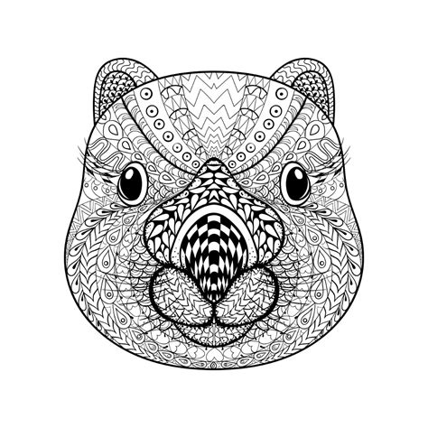 Printable Animal Coloring Pages by Animal Coloring Pages For Adults Best Coloring Pages For