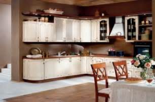 Kitchen Cabinets From Home Depot by Home Depot Kitchen Cabinet Ideas Homes Gallery