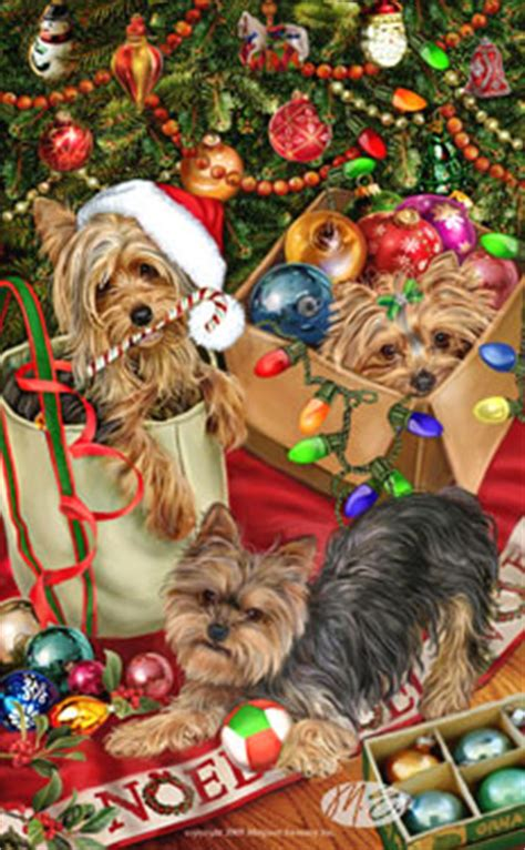 shoo for yorkies shop for cards terrier