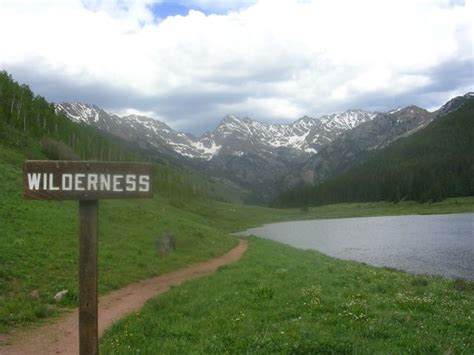 Pictures Of The Wilderness
