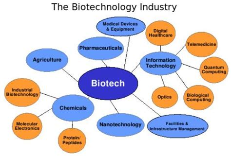 Biotechnology Business Mba by Is Mba Better Than M Sc To Do After Completing B Sc In