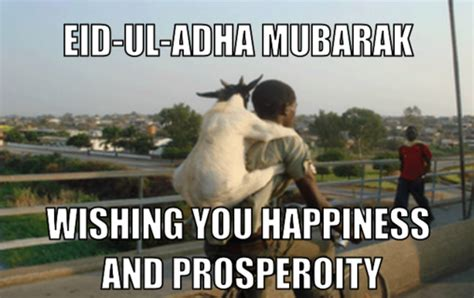 Eid Memes - the big festival the bakra eid 171 being ifrahim