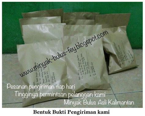 Paket Bulus Dan Minyak Bulus 25ml 1 dibalik rahasia khasiat dan manfaat minyak bulus asli