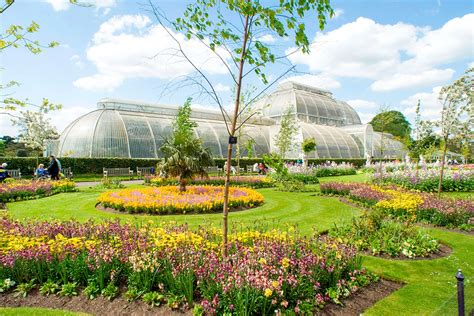 Visit To Kew Gardens And Palace With Tea And Cake For Two Kew Botanical Garden