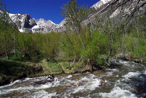 big pine creek cground cing in the inyo national