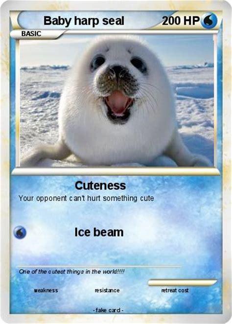 Harp Meme - baby harp seal harp seal harp sealpup 第12页 点力图库