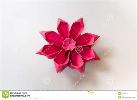 Origami Gerbera - origami gerbera flower stock image image of gerbera