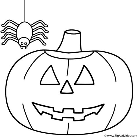 pumpkin jack o lantern with spider coloring page halloween