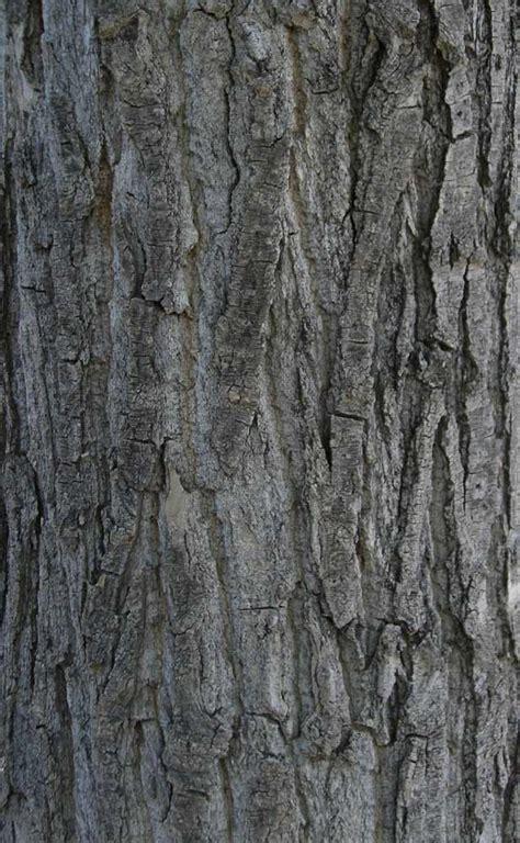 tempetahucom contoh gambar texture cantik