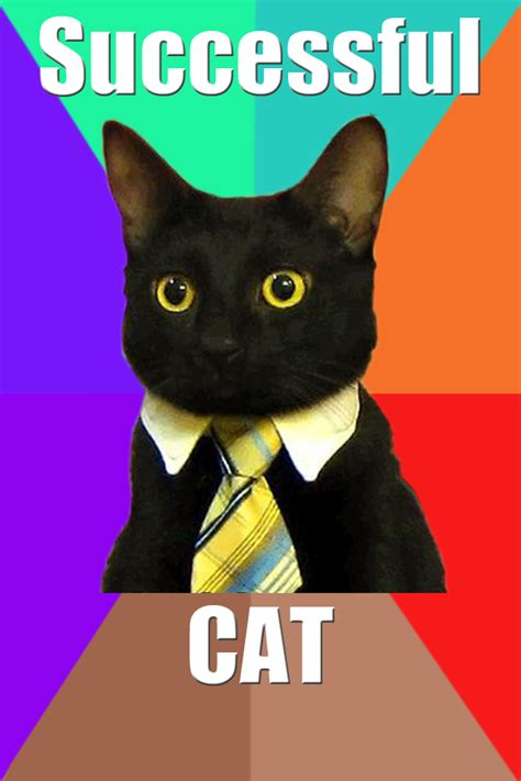 Black Cat Meme - app la mode successful cat meme