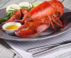 Bibit Lobster Air Tawar Malang lobster air tawar malang keunggulan lobster air tawar