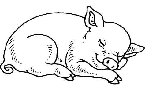 pigsty coloring page free coloring pages of pigsty
