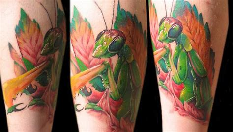 mantis tattoo 60 fantastic mantis tattoos