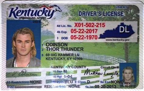Kentucky Verification Letter Driver S License Kentucky Ky Drivers License Id Viking
