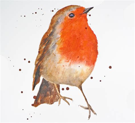 demo how to paint a robin in watercolour eastwitching